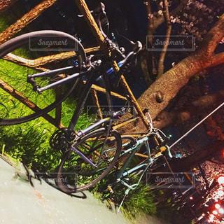 自転車ナイトデートの写真・画像素材[1124725]