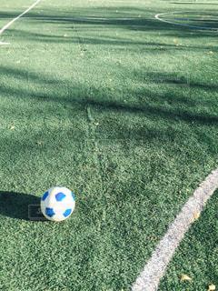 芝生の上のサッカーボールの写真・画像素材[1125020]