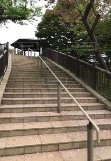 葉桜チラ見え階段の写真・画像素材[1124519]