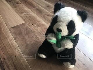 笹を持ったパンダのぬいぐるみの写真・画像素材[1124712]