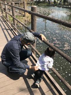 池を覗くおじいちゃんと子供の写真・画像素材[1127354]