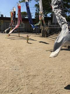 デカイ鯉のぼりと娘の写真・画像素材[1125126]
