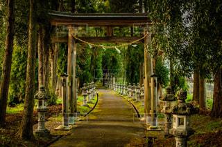 神社へ続く道の写真・画像素材[1875762]