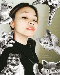 カメラを見ている猫 - No.1244513