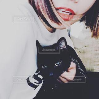 猫を保持している女性 - No.1244514