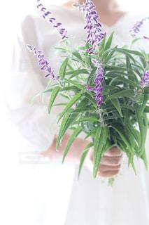 花と女性の写真・画像素材[1709929]
