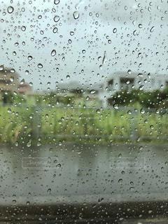 雨降る車の中の写真・画像素材[1131575]