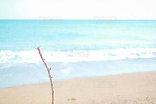 白砂のビーチに立っている人の写真・画像素材[1127629]