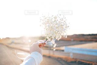 花束と光の写真・画像素材[1127710]
