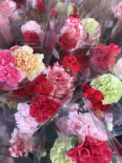 近くの花のアップ - No.1218704