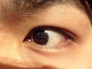 目の写真・画像素材[1143325]