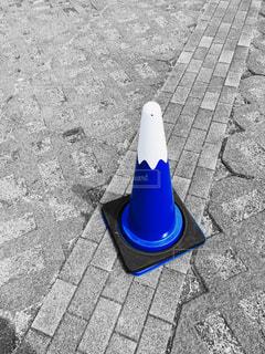 歩道の上に座っている鳥の写真・画像素材[1134071]