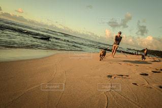 砂の中を歩く男の写真・画像素材[1129640]
