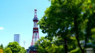 札幌タワーの写真・画像素材[1269527]