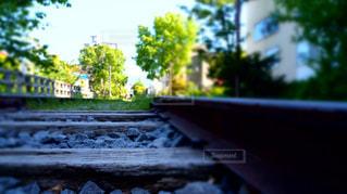 水平線に続く線路の写真・画像素材[1269558]