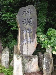 神社 - No.56013