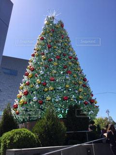 真夏のクリスマスの写真・画像素材[1130507]