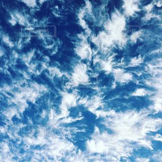 Wing of Angelの写真・画像素材[1131933]