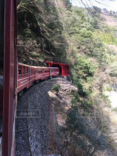 山岳鉄道の写真・画像素材[1132810]