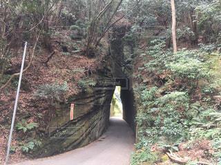 トンネルの写真・画像素材[1234207]