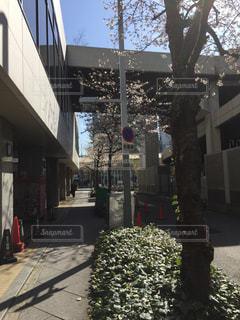 建物の側にフォーカスを持つストリート シーン - No.1133550