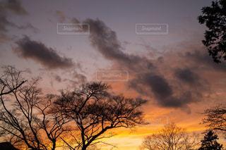 空には雲のグループの写真・画像素材[1146362]