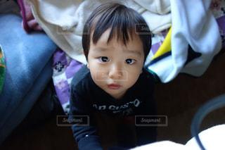 見つめる子供の写真・画像素材[1133912]