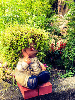 可愛い植木鉢の写真・画像素材[1136322]