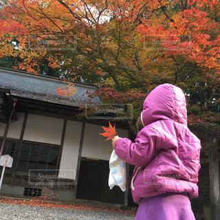 延暦寺の紅葉とピンク少女の写真・画像素材[1134030]