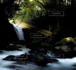森の中の滝の写真・画像素材[1148308]