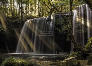 森の中の滝の写真・画像素材[1167586]