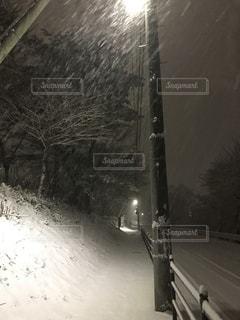 雪夜道の写真・画像素材[1142694]