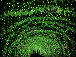 緑色のライト - No.1135690