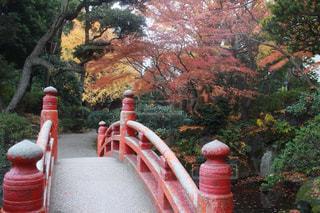 庭園の橋 - No.1136495