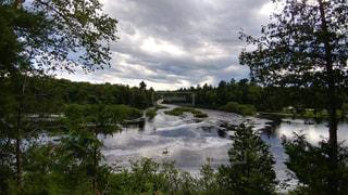 木々 に囲まれた水の流れの写真・画像素材[1138009]
