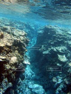 サンゴ礁の谷の写真・画像素材[1137764]