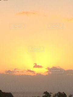 日の入りに浮かぶ鳥の写真・画像素材[1136432]