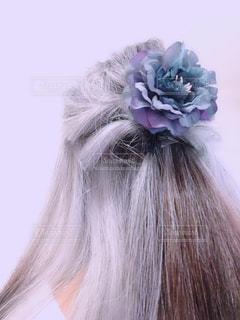 紫の髪の人の写真・画像素材[1485926]
