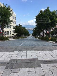 八幡坂の写真・画像素材[1137942]