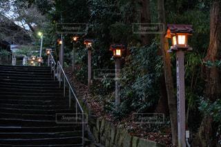 暮れの神社の写真・画像素材[1145341]