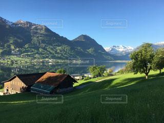 背景の山に大規模なグリーン フィールドの写真・画像素材[1138220]