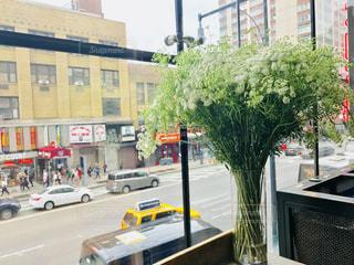 マンハッタンのカフェの花 2の写真・画像素材[1229596]
