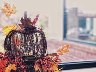 秋のインテリア 2の写真・画像素材[1570691]