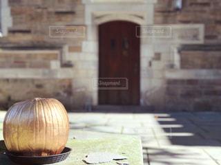 イェール大学の金のカボチャ 2の写真・画像素材[1578597]