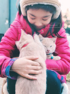 少女と可愛い子猫たちの写真・画像素材[1629059]