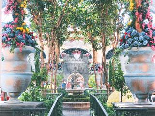 ベラージオの中庭の写真・画像素材[2229174]