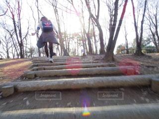 スケート ボードを木製のベンチに乗る人の写真・画像素材[1140884]