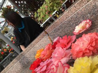 近くの花のアップの写真・画像素材[1141087]