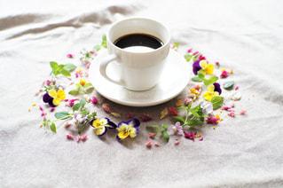 コーヒーの写真・画像素材[1157642]