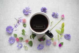 コーヒーの写真・画像素材[1449903]